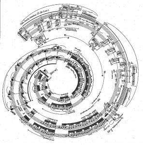 Images, espace et algorithmie musicale